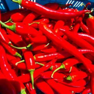 Rode peper - 2 stuks